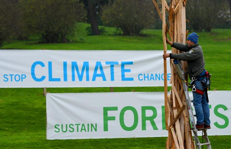An artist builds a tree out of pieces of wood at the Rheinaue park on November 8, 2017 during the COP23 United Nations Climate Change Conference in Bonn, Germany