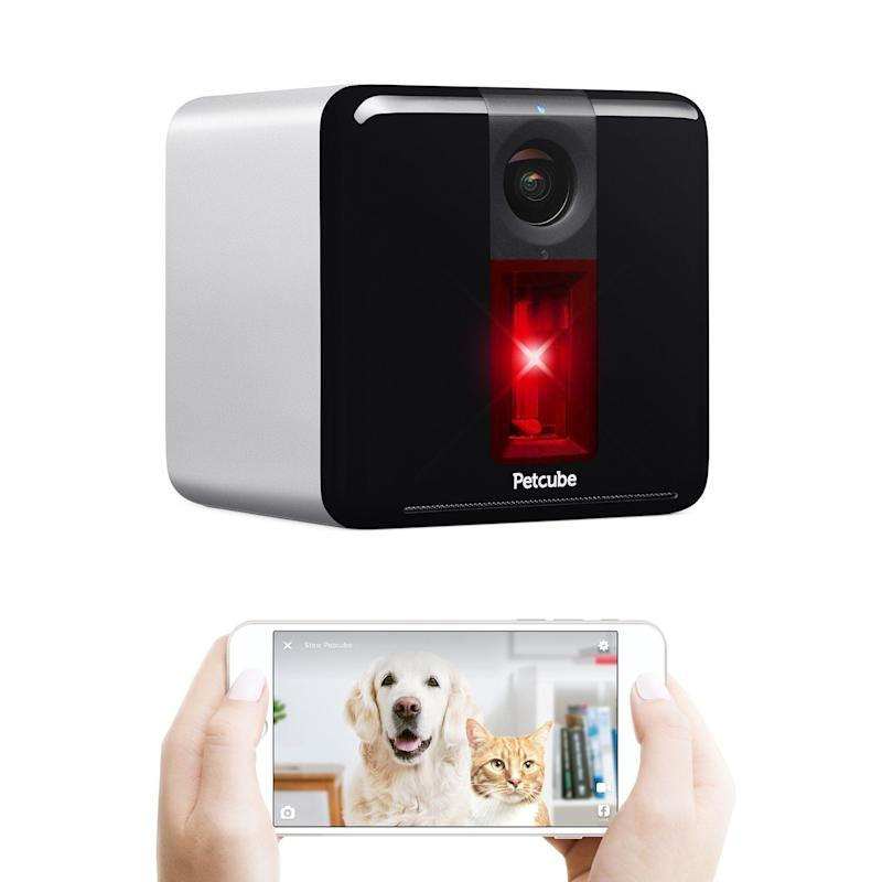 "Check out the PetCube Play <a href=""https://www.amazon.com/Petcube-Play-Interactive-Camera-Silver/dp/B01JOBAOCE/"" target=""_blank"">here</a>."