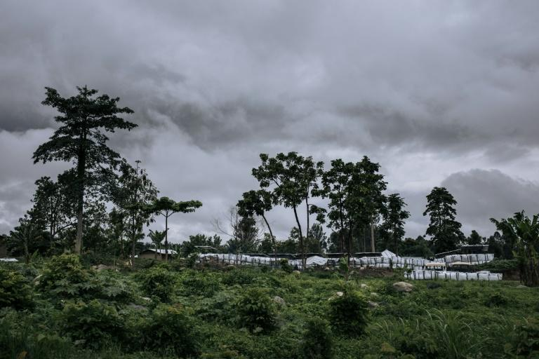 A forward base set up by the DRC army and rangers from the Virunga National Park on the outskirts of Mutwanga