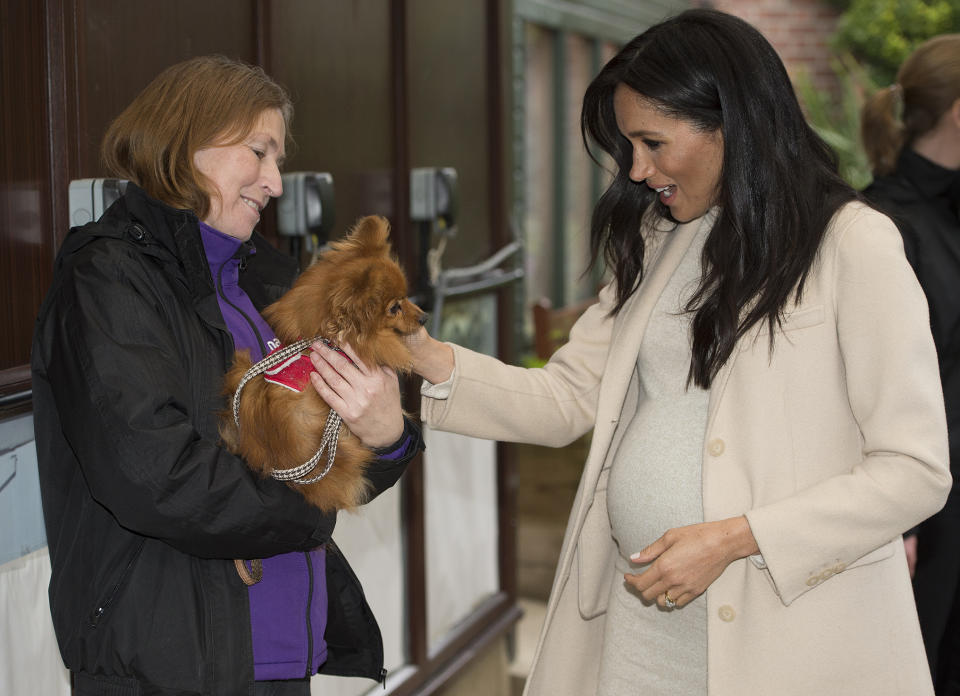 """Meghan, Duchess of Sussex meets a dog named """"Foxy"""" during her visit to the animal welfare charity Mayhew in London on January 16, 2019. - Established in 1886, Mayhew looks for innovative ways to reduce the number of animals in need through pro-active community and educational initiatives and preventative veterinary care. (Photo by Eddie MULHOLLAND / POOL / AFP)        (Photo credit should read EDDIE MULHOLLAND/AFP via Getty Images)"""