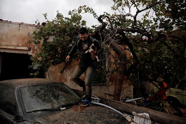<p>A local, carrying a dog in his jacket, saves a cat that was trapped in a tree, following a heavy rainfall in the town of Mandra, Greece, Nov. 16, 2017. (Photo: Alkis Konstantinidis/Reuters) </p>