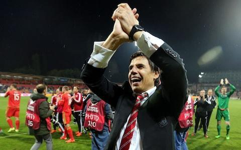 <span>Coleman enjoyed great success with the Wales international side</span> <span>Credit: EPA </span>