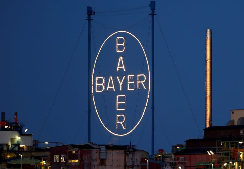 FILE PHOTO: A logo of Bayer AG is pictured at the so called 'Chempark'