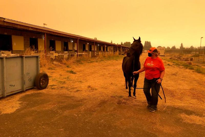 Catherine Shields leads her horse Takoda on the Oregon State Fairgrounds under eerie smoky skies in Salem, Oregon. Shields evacuated her horse and other animals to the fairgrounds as wildfires threatened.