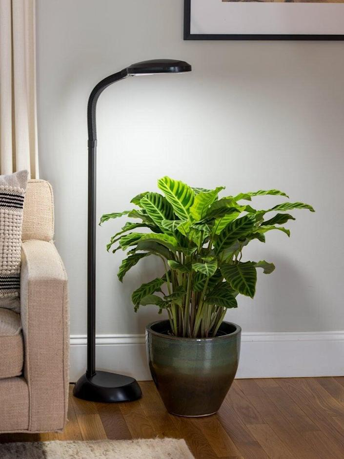 """<p>The perfect height for <a href=""""https://www.popsugar.com/home/Best-Large-Indoor-Plants-45878882"""" class=""""link rapid-noclick-resp"""" rel=""""nofollow noopener"""" target=""""_blank"""" data-ylk=""""slk:tall indoor plants"""">tall indoor plants</a>, the <span>Agrobrite Floor LED Plant Lamp</span> ($85) mimics natural daylight for your plants and provides optimal color rendering for reading. </p>"""