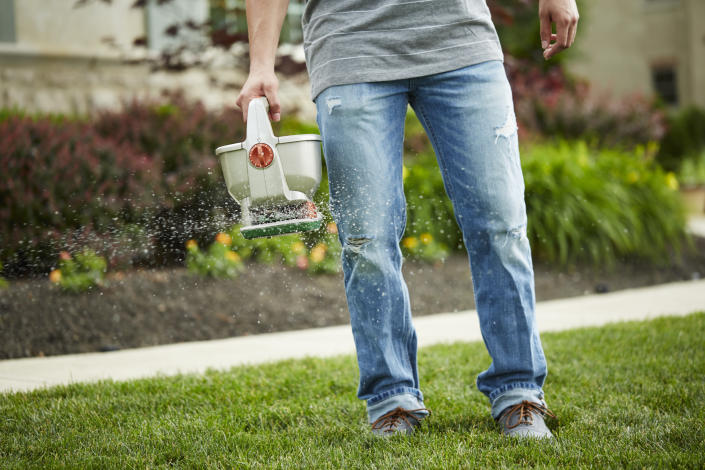 Lawn fertilizer and Scotts Turf Builder from Canadian Tire