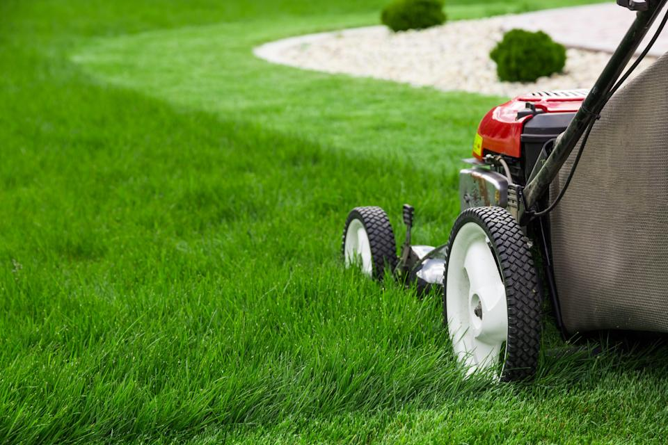 Mow your lawn more frequently for greener grass.