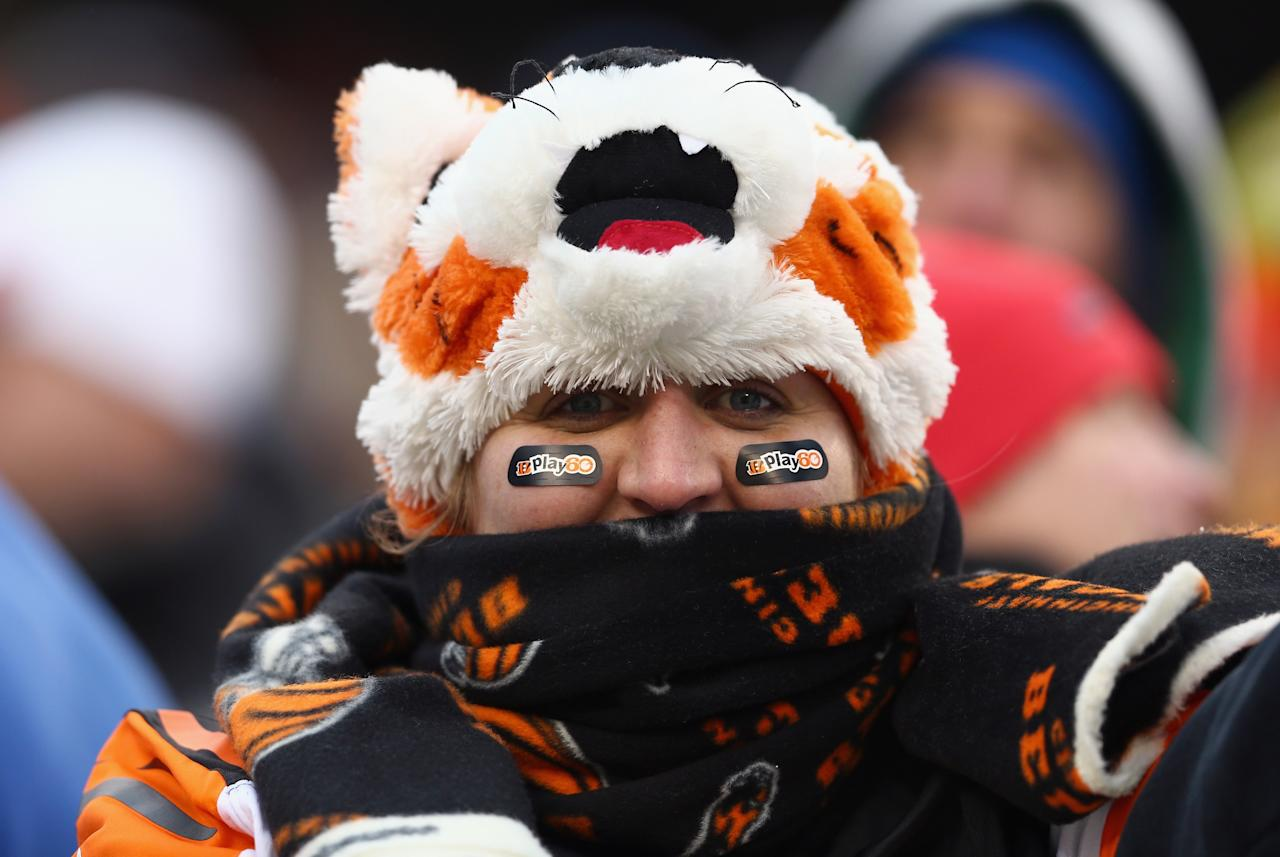 CINCINNATI, OH - DECEMBER 08: A Cincinnati Bengals fan watches the action during the NFL game against the Indianapolis Colts at Paul Brown Stadium on December 8, 2013 in Cincinnati, Ohio. (Photo by Andy Lyons/Getty Images)