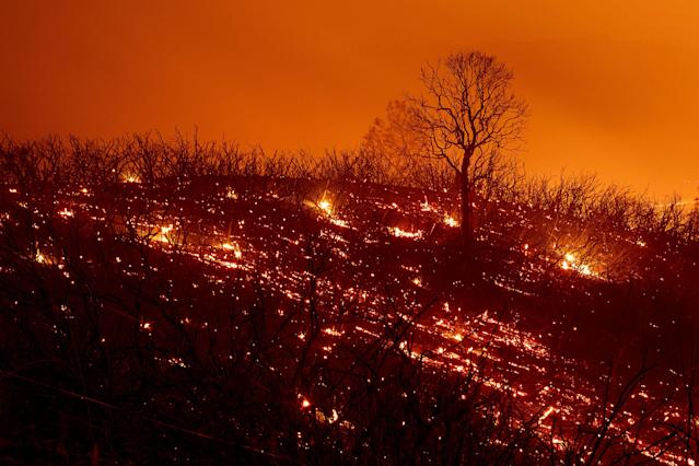 <p>Embers smoulder along a hillside after the Ranch Fire, part of the Mendocino Complex Fire, burned though the area near Clearlake Oaks, Calif., on Aug. 5, 2018. (Photo: Noah Berger/AFP/Getty Images) </p>