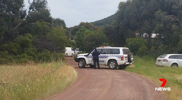 A man has died after a swarm of bees stung him on a farm in Victoria's Grampians region. Picture: 7 News, file