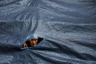 An elderly protesting farmer looks through a hole in a tarpaulin covering the tractor trolley as they march to the capital during India's Republic Day celebrations in New Delhi, India, Tuesday, Jan. 26, 2021. Tens of thousands of farmers drove a convoy of tractors into the Indian capital as the nation celebrated Republic Day on Tuesday in the backdrop of agricultural protests that have grown into a rebellion and rattled the government. (AP Photo/Altaf Qadri)