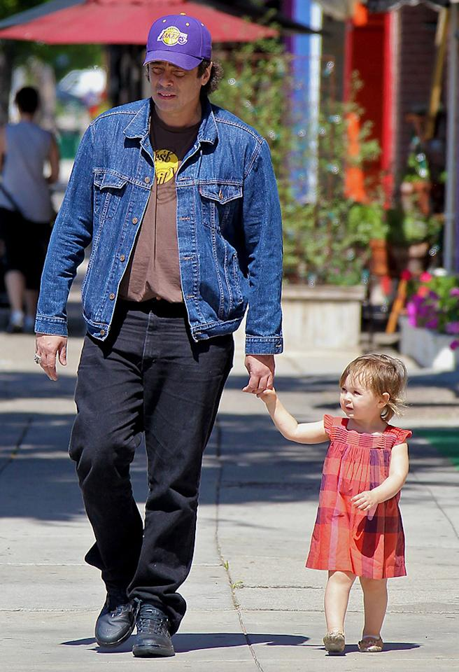 Benicio del Toro was on daddy duty when the actor took 13-month-old Delilah to a play date in L.A. The little girl's mom is Rod Stewart's daughter Kimberly Stewart. (5/14/2013) <br /><br />