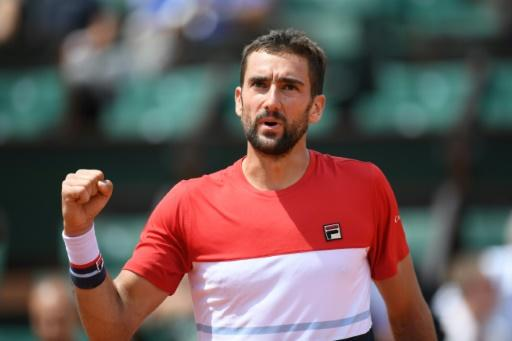 Victory celebration: Marin Cilic celebrates after beating Poland's Hubert Hurkacz