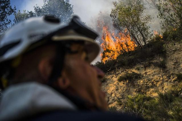 <p>A forest fire in the Luberon has ravaged more than 800 hectares between Pertuis and Mirabeau in the Vaucluse, July 24, 2017. (Lilian Auffret/SIPA/REX/Shutterstock) </p>