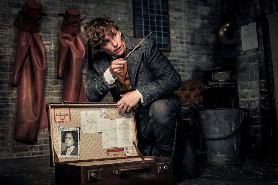 Newt's on the case in <i>Fantastic Beasts: The Crimes of Grindelwald.</i> (Photo: Warner Bros.)