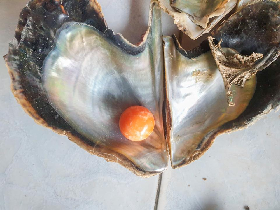 It is believed the pearl is worth more than $400,000. Source: Viral Press/Australscope