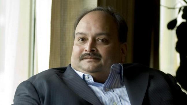 Mehul Choksi's statement comes at a time when Indian agencies have turned the heat on Nirav Modi and trying hard to extradite him.