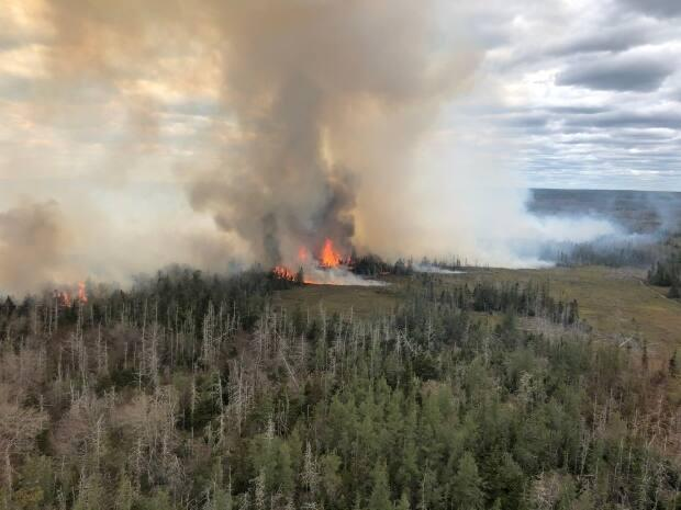 Two forest fires are happening near Barrington in southwestern Nova Scotia. (Department of Lands and Forestry - image credit)