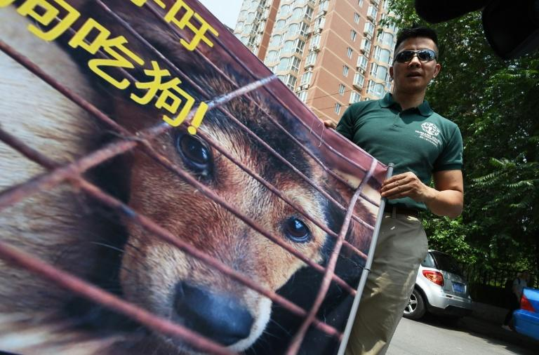 Humane Society International activist Peter Li holds a protest banner near the Yulin government office in Beijing on June 10, 2016