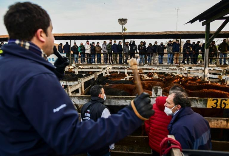 People attend an auction at the Liniers Cattle Market ahead of its imminent move from Buenos Aires to Canuelas
