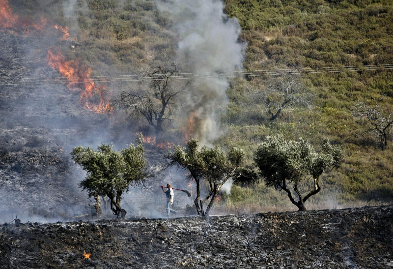 A Palestinian man walks with a shovel through an olive grove set on fire near the West Bank village of Burin, near Nablus, Monday, June .3, 2013. Palestinian witnesses say Jewish settlers from Yitzhar settlement set fire to an olive grove. Palestinians say a fire has ripped through their lands in the northern West Bank, scorching several acres (hectares) of olive and almonds groves. Nimir Tirawi of the village of Burin says the fire began when hardline Jews from the nearby settlement of Yitzhar lit the blaze Monday. (AP Photo/Nasser Ishtayeh)