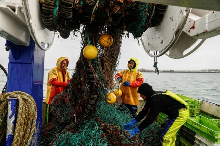 Jersey's fishermen are concerned for their future if bigger, better equipped French trawlers are allowed access (AFP/Sameer Al-DOUMY)