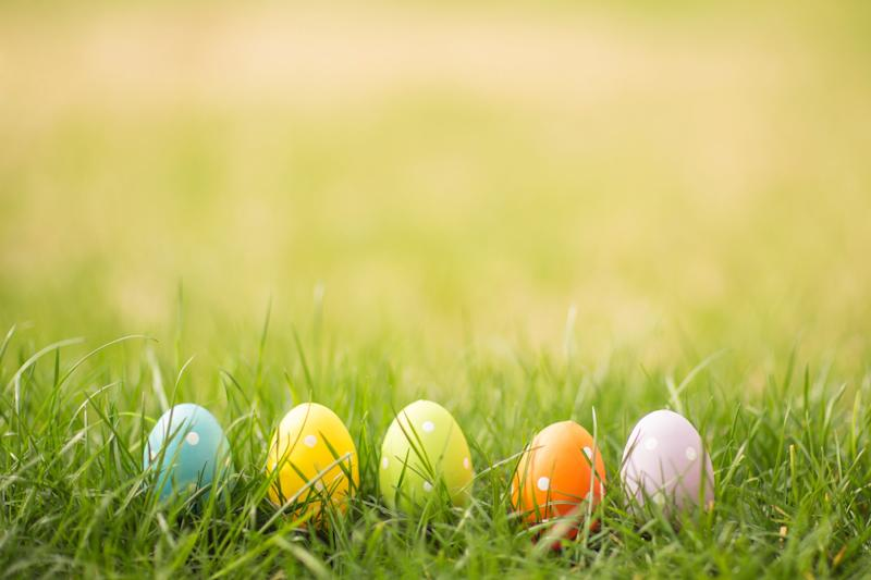 Colorful Easter eggs hiding in the tall grass.
