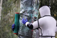 Wearing protective suits, Washington State Department of Agriculture workers finish wrapping a tree in plastic after working to eradicate a nest inside of Asian giant hornets Saturday, Oct. 24, 2020, in Blaine, Wash. Scientists in Washington state discovered the first nest earlier in the week of so-called murder hornets in the United States and worked to wipe it out Saturday morning to protect native honeybees. Workers with the state Agriculture Department spent weeks searching, trapping and using dental floss to tie tracking devices to Asian giant hornets, which can deliver painful stings to people and spit venom but are the biggest threat to honeybees that farmers depend on to pollinate crops. (AP Photo/Elaine Thompson)