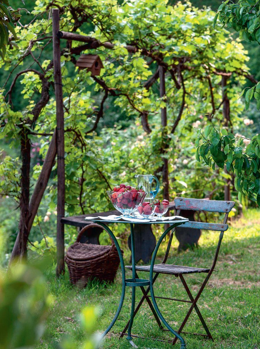 Photo credit: Glorious Gardens, by Country Living| Alamy Stock Photo