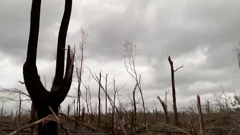 Damaged trees seen following a tornado in Beauregard, Alabama, U.S. in this March 3, 2019 still image obtained from social media video. (Photo: Scott Fillmer /via Reuters)