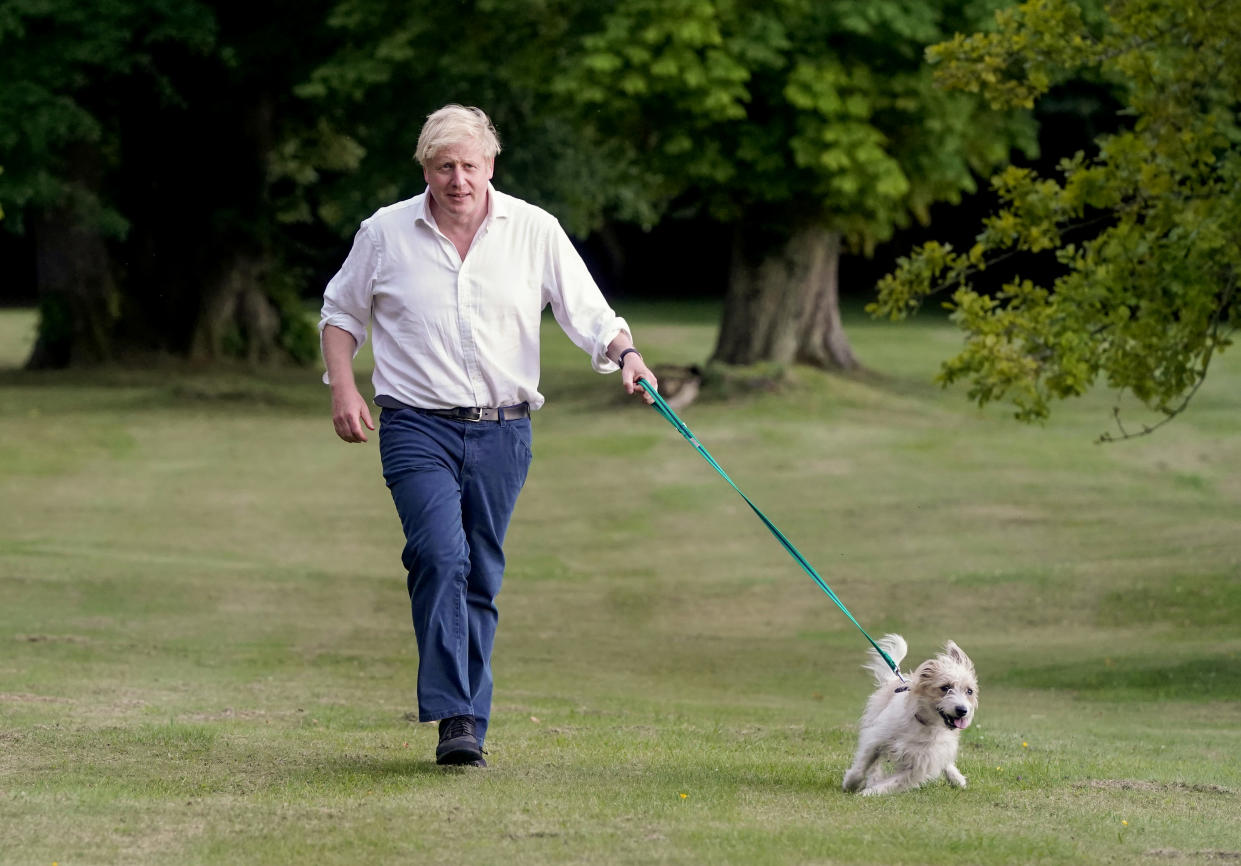 A picture of Boris Johnson with his dog Dilyn taken by taxpayer-funded photographer Andrew Parsons