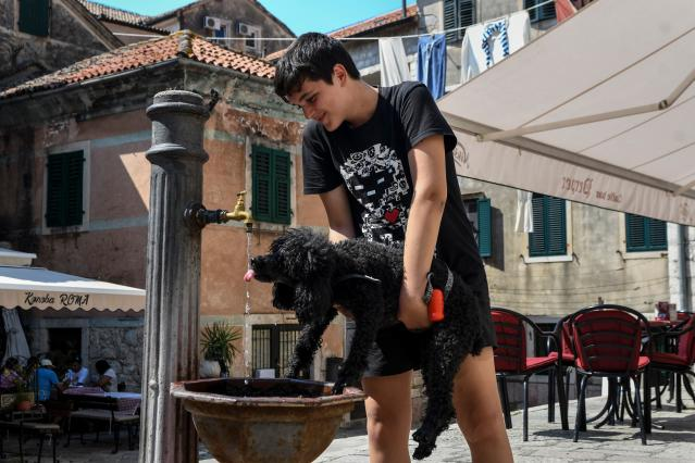 <p>A boy helps a dog to drink water on a hot summer day in the town of Kotor, Montenegro on Aug. 7, 2018, during an on-going heatwave in Europe. (Photo: Savo Prelevic/AFP/Getty Images) </p>