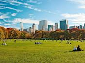 """<p><strong>Let's start big picture. What's the vibe here?</strong><br> Step off the crowded sidewalks of 59th Street into Central Park and you'll hardly realize what lies before you: 693 acres of man-made gardens, meadows, forests, and rolling hillsides. If you ambled down every one of Central Park's pathways, you would walk 58 miles. (That's not a challenge, please don't.) Along the way, you pass fountains, monuments, sculptures, bridges, and arches. Plus 21 playgrounds, <a href=""""https://www.cntraveler.com/gallery/christmas-in-new-york-city?mbid=synd_yahoo_rss"""" rel=""""nofollow noopener"""" target=""""_blank"""" data-ylk=""""slk:a winter ice-skating rink"""" class=""""link rapid-noclick-resp"""">a winter ice-skating rink</a>, <a href=""""https://www.cntraveler.com/activities/new-york/central-park-zoo?mbid=synd_yahoo_rss"""" rel=""""nofollow noopener"""" target=""""_blank"""" data-ylk=""""slk:a zoo"""" class=""""link rapid-noclick-resp"""">a zoo</a>, and even a castle. But you'd hardly notice the four major crosstown thoroughfares, which cleverly disappear into foliage-covered tunnels. What you will do is break out into a <em>Sound of Music</em>-style sprint upon arriving at Sheep Meadow or the Great Lawn, vast landscapes dotted with New Yorkers looking to escape the urban jungle in which they reside.</p> <p><strong>Any standout features or must-sees?</strong><br> Embrace your inner child at Conservatory Water, the seasonal pond on the East Side (from 72nd to 75th Streets) made famous in E.B. White's iconic children's novel, Stuart Little. Here you'll find nautical enthusiasts both young and old navigating radio and wind-powered boats across the pond's shimmering waters.</p> <p><strong>Was it easy to get around?</strong><br> Manhattan's urban grid disappears among the winding paths and dense foliage of Central Park. Even seasoned city dwellers can get turned around. But there's a trick to reorienting yourself: Check the numbers at the base of any lamp post. Each is inscribed with four numbers—the first two digits indic"""