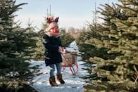 """<p><strong>Canton, South Dakota</strong> (November 23-December 15)</p><p>Befriend Santa and adorable farm animals during your visit to <strong><a href=""""http://www.riverviewtreefarm.com/advice.html"""" rel=""""nofollow noopener"""" target=""""_blank"""" data-ylk=""""slk:Riverview Tree Farm"""" class=""""link rapid-noclick-resp"""">Riverview Tree Farm</a></strong>. For over 20 years, families in South Dakota have gathered together to find their tree and enjoy plenty of holiday treats.<br></p>"""