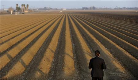 A sercret service agent looks over a farm field as President Barack Obama speaks to the media on California's drought situation in Los Banos