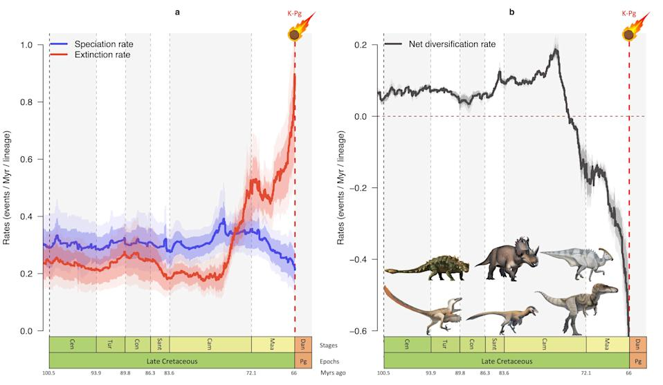 Graphs showing how speciation rate (blue) dipped and extinction rate (red) rose sharply in the last 10 million years of the age of dinosaurs. Run together, this corresponds to a rapid reduction in the number of species (black) just before the impact of the asteroid 66 million years ago (Fabien L. Condamine / ISEM / CNRS)