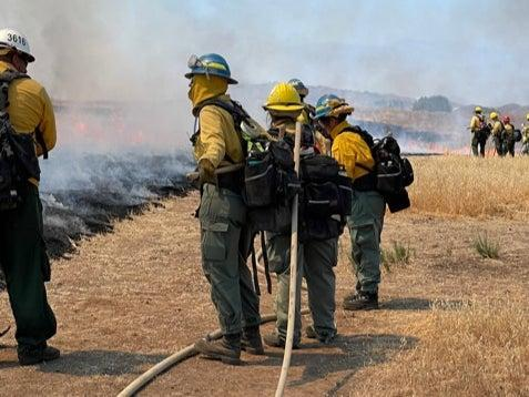 Inland Crew 5 line up along the wall of smoke and flames of prescribed burns to ensure the fire doesn't spread (Louise Boyle/The Independent)