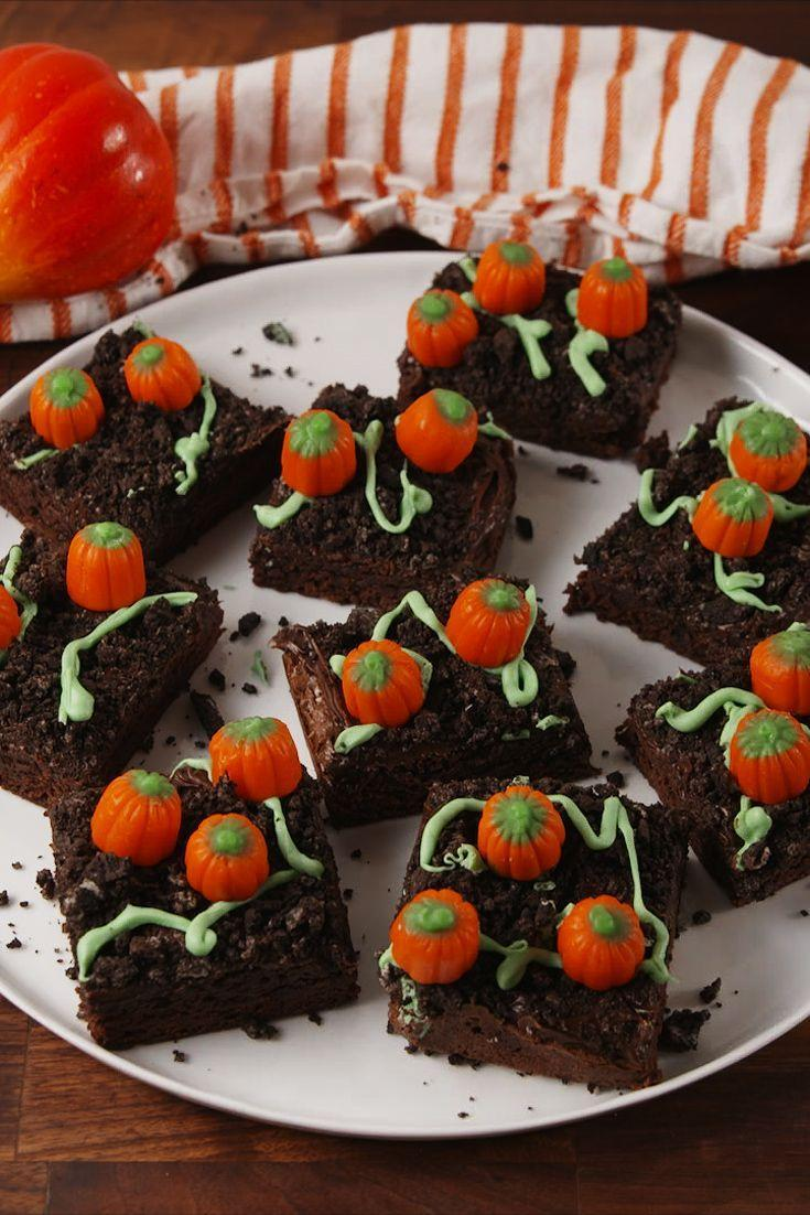 "<p>The sweetest pumpkin patch you ever did see.</p><p>Get the recipe from <a href=""https://www.delish.com/cooking/recipe-ideas/recipes/a55546/pumpkin-patch-brownies-recipe/"" rel=""nofollow noopener"" target=""_blank"" data-ylk=""slk:Delish"" class=""link rapid-noclick-resp"">Delish</a>.</p>"