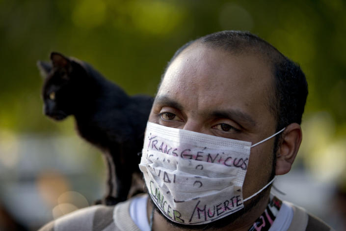 """A man with a cat on his shoulder wears a mask covered by the words in Spanish """"Transgenic, cancer/death"""" as he protests the use of genetically modified food near the offices of U.S.-based seed giant Monsanto, in Buenos Aires, Argentina, Saturday, May 25, 2013. Activists are taking part in a global protest """"March Against Monsanto,"""" demanding a stop to the use of agrochemicals and the production of genetically modified food, which according to them has harmful health effects, causing cancer, infertility and other diseases. Marches and rallies against seed giant Monsanto were held across the U.S. and in dozens of other countries Saturday. (AP Photo/Natacha Pisarenko)"""