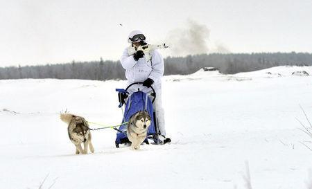 A Russian serviceman of the Northern Fleet's Arctic mechanised infantry brigade participates in a military drill on riding reindeer and dog sleds near the settlement of Lovozero outside Murmansk, Russia January 23, 2017. Picture taken January 23, 2017. Lev Fedoseyev/Ministry of Defence of the Russian Federation/Handout via REUTERS