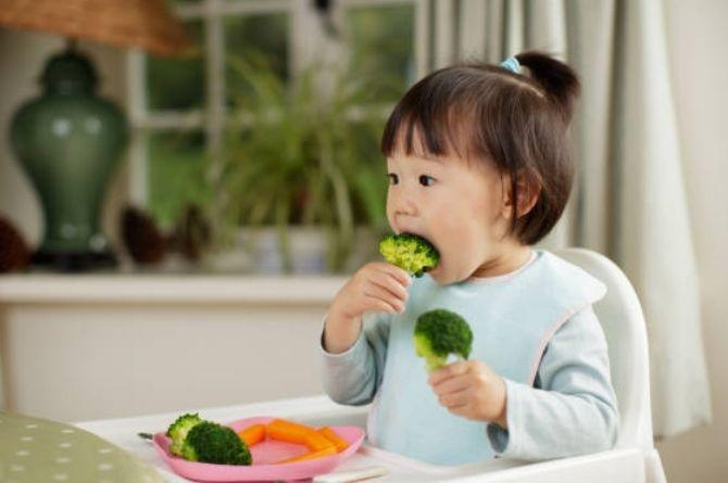 Broccoli Benefits For Baby
