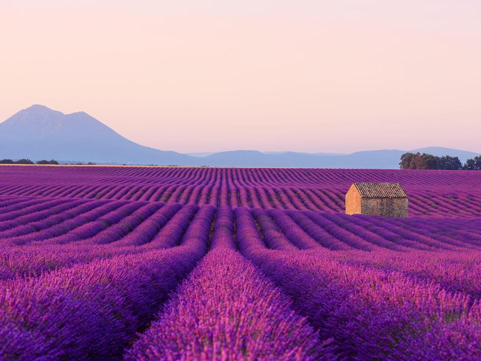 <p>Spontaneous trips to stay with friends in Provence are out</p> (iStock)