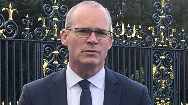 No-deal Brexit will not be Ireland's choice, says Coveney