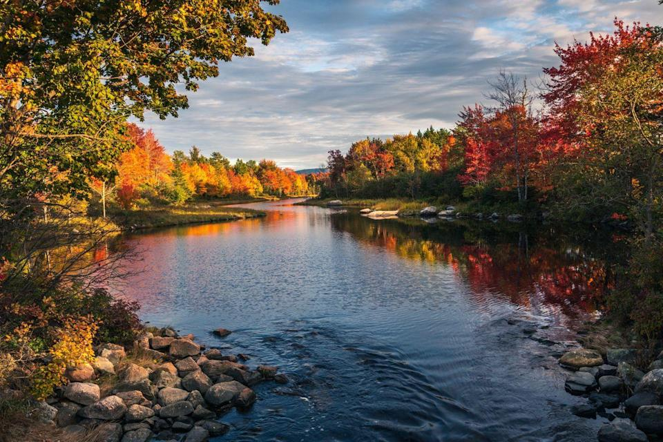 """<p>There are plenty of places to camp in <a href=""""https://acadiamagic.com/lodging/camping.html"""" rel=""""nofollow noopener"""" target=""""_blank"""" data-ylk=""""slk:Acadia National Park"""" class=""""link rapid-noclick-resp"""">Acadia National Park</a>, and you really can't go wrong with any of them. The park itself is very large, but every part of it is beautiful - there are mountains, forests, ocean coastlines, and plenty of lakes, ponds, and wetlands to explore. You'll see the rocky Atlantic coast, sandy beaches, fjords, and even a lighthouse. This is one of the most beautiful national parks on the Northeast to explore. </p>"""
