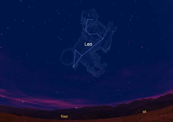 Cat Nights: See Lions and a Lynx in the Evening Sky