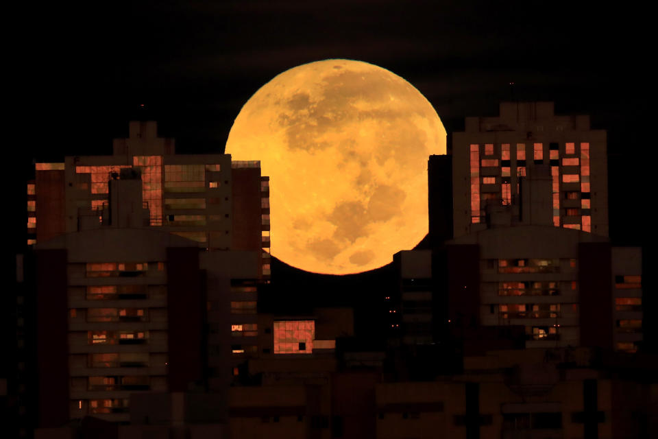 A lunar eclipse is observed during dawn in Brasilia, Brazil, Wednesday, May 26, 2021. Wednesday's eclipse is the first in more than two years and coincides with a supermoon. (AP Photo/Eraldo Peres)