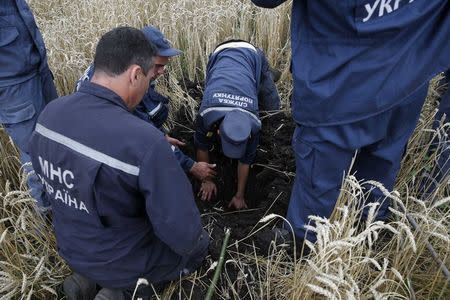 Members of the Ukrainian Emergency Ministry search for bodies near the site of Thursday's Malaysia Airlines Boeing 777 plane crash near the settlement of Grabovo, in the Donetsk region July 18, 2014. REUTERS/Maxim Zmeyev