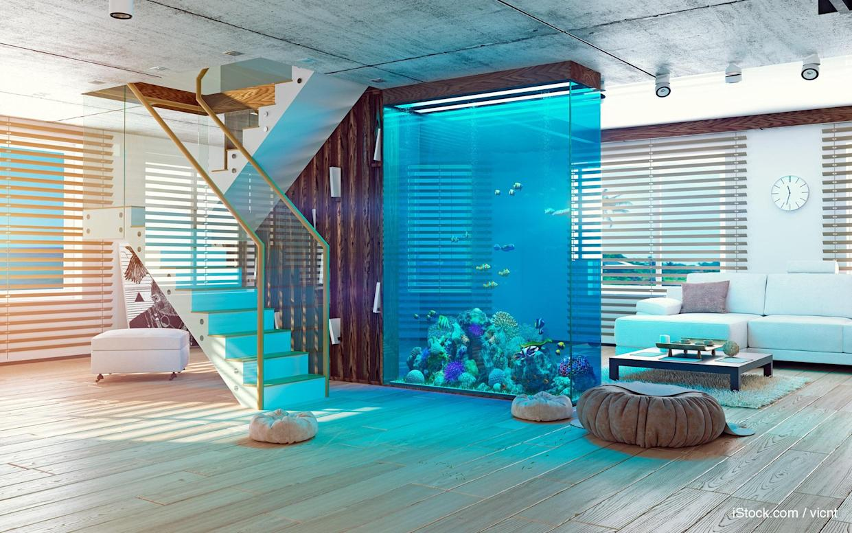 built-in aquarium