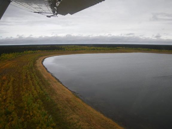 An aerial photo of Alaska's Twelvemile Lake showing the dried lake margin and bands of willows.