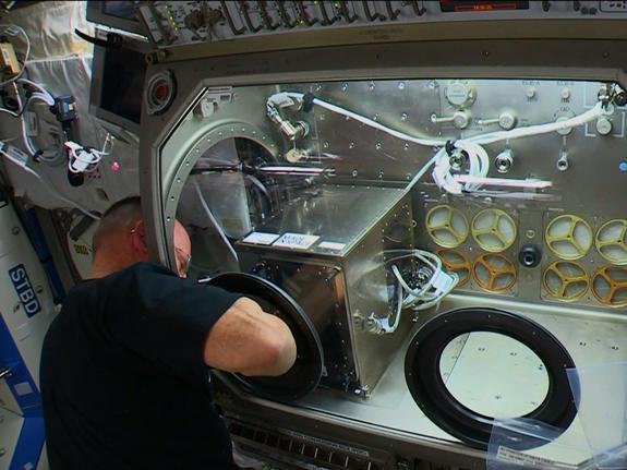 Commander Barry WIlmore works on Monday to install a 3D printer inside the Destiny laboratory's Microgravity Science Glovebox.